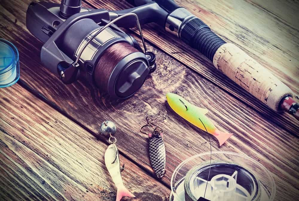 freshwater techniques for beginners